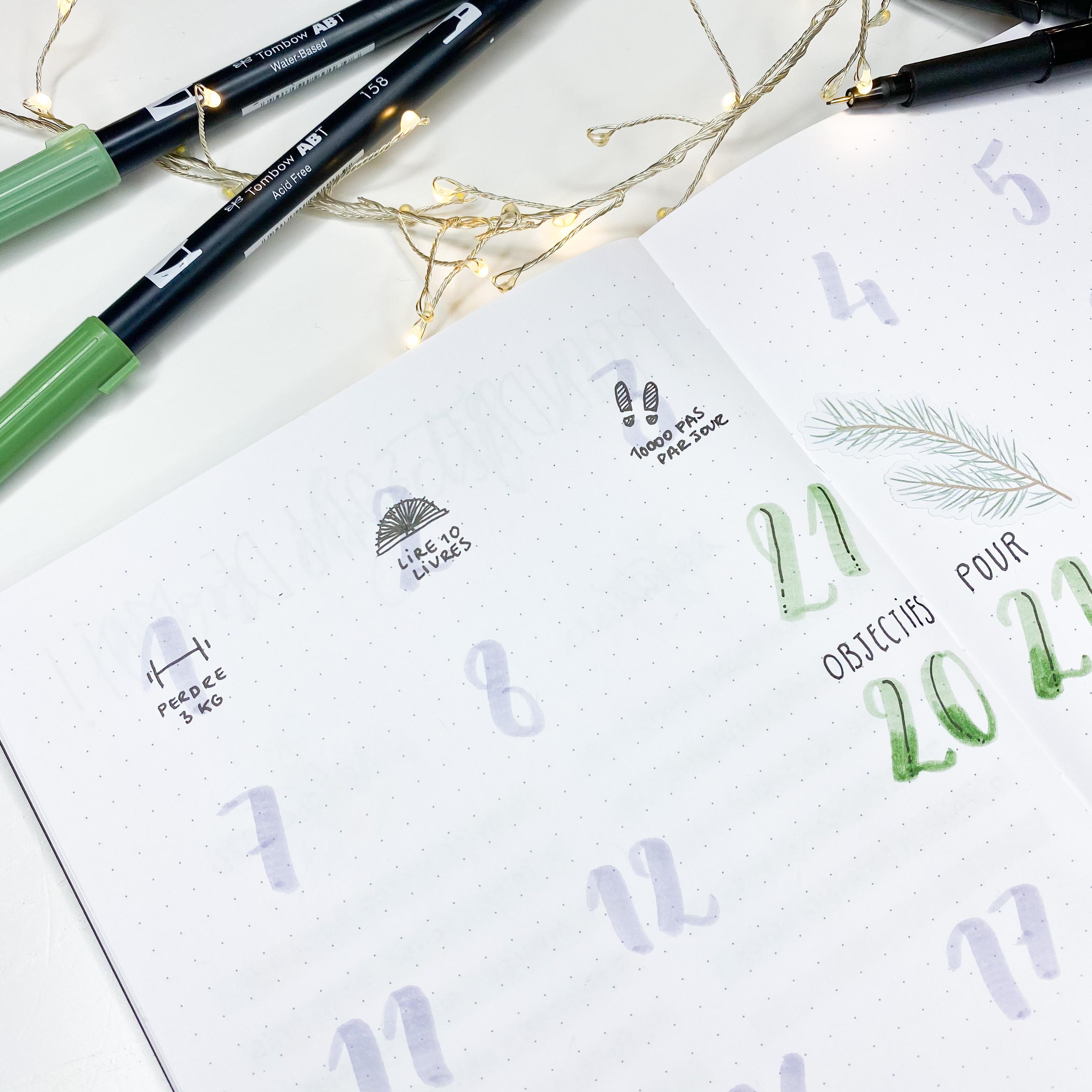 Doodles objectifs 2021 sur Bullet Journal Quo Vadis Auly's Studio